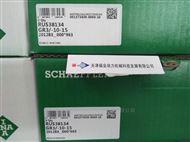德国INA循环滑块RUS38206-KS-GR3现货2天发