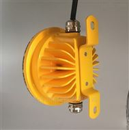 BLD118LED防爆灯 弯杆式LED防爆照明灯20W